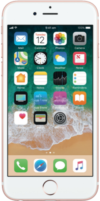iphone6s-smal (1)